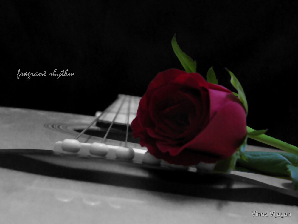 Fragrant rhythm by Vinod Vijayan