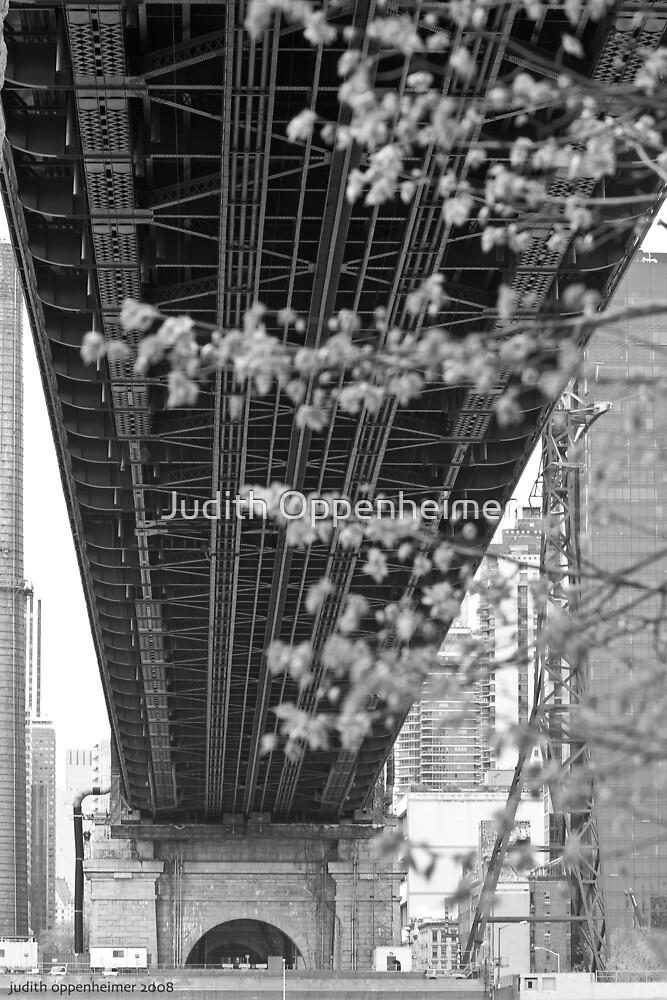 Under the Queensboro Bridge by Judith Oppenheimer