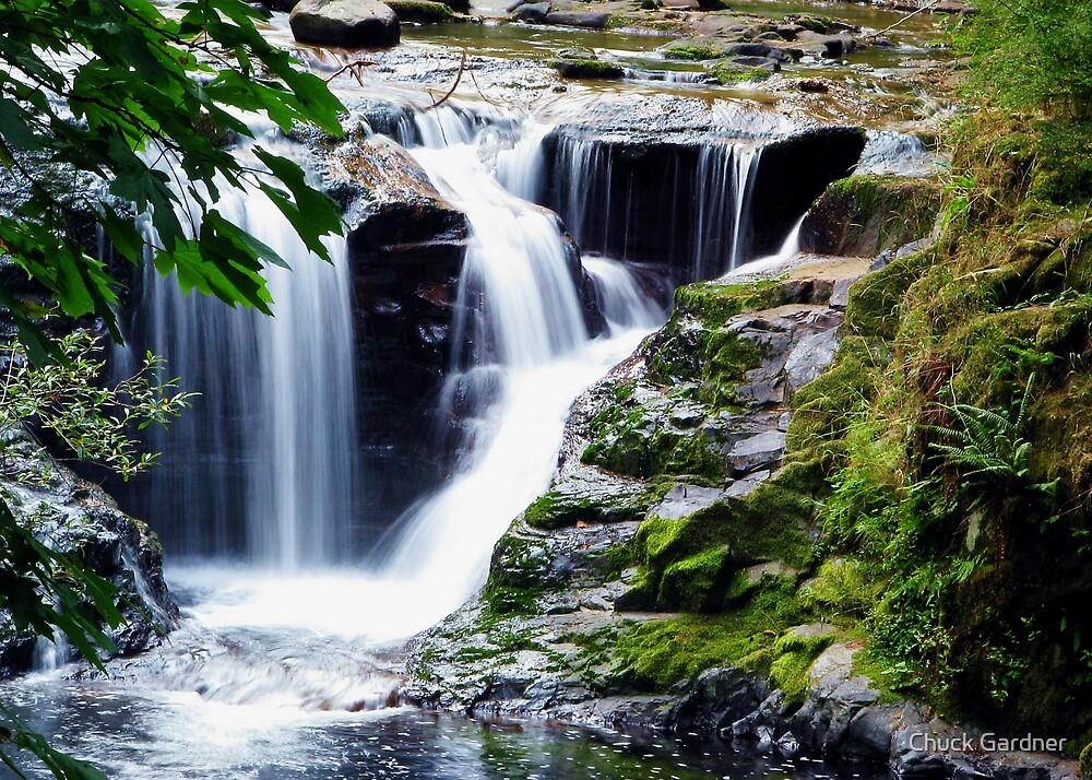Sweet Creek Trailhead  by Chuck Gardner