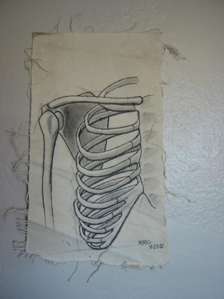 rib bones by m32ad