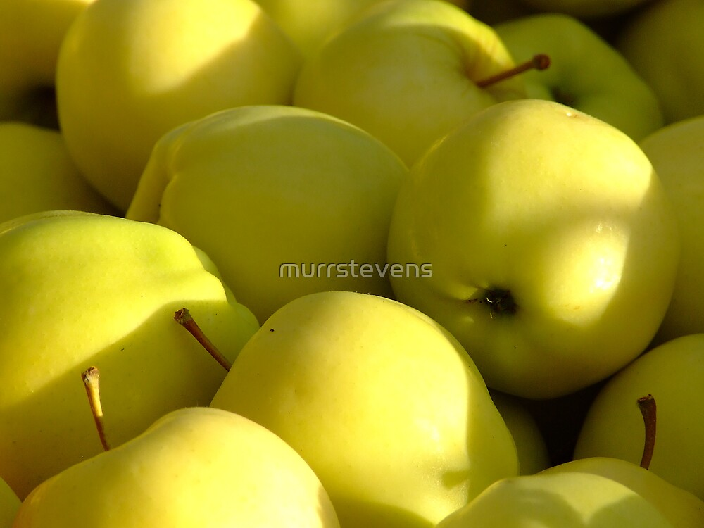 yellow delicious by murrstevens