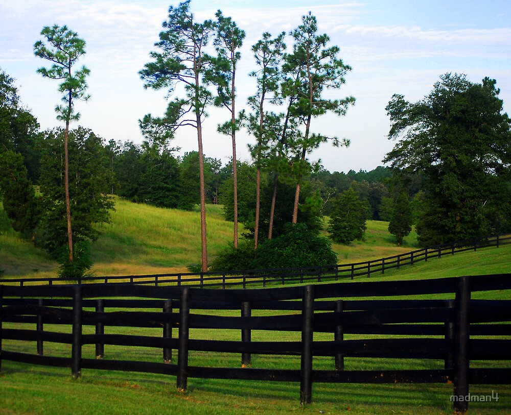 Rolling Hill Horse Farm by madman4