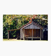 The Old Wood Shed Photographic Print