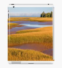 Tidal Marsh iPad Case/Skin