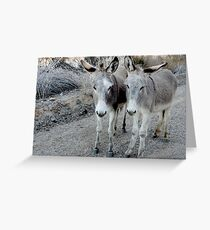 Parker Pals Greeting Card