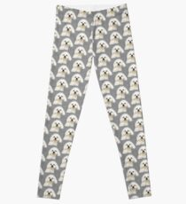 Maltese puppy Leggings