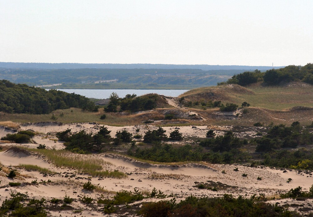 Pristine Dunes by shadyuk