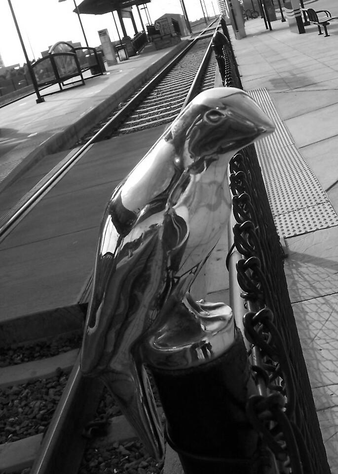 bird on the rails by HAHANOW