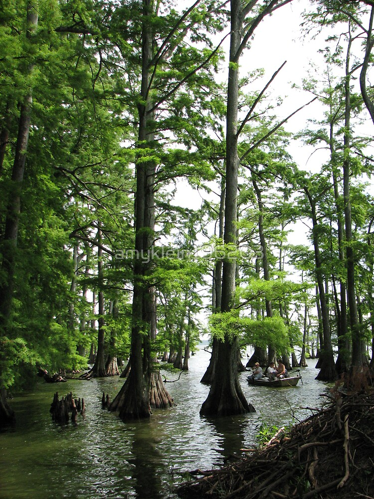 Reelfoot Lake by amyklein196203
