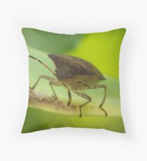 Here Looking AT You Throw Pillow