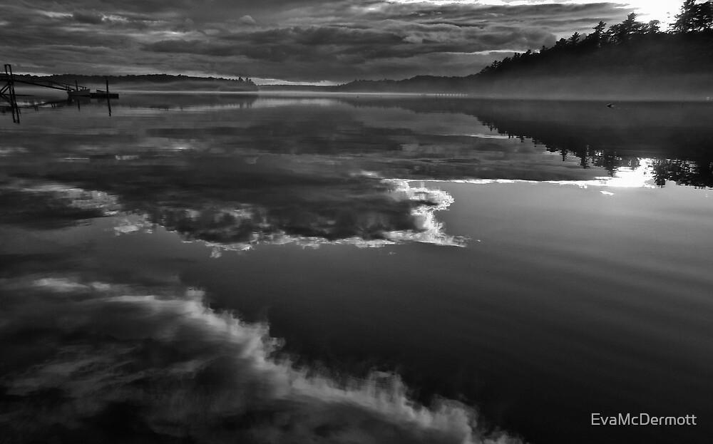 Fuzzy Reflection by EvaMcDermott