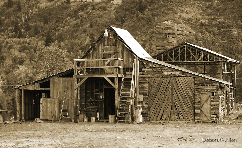 Old Barn with a Pitched Roof  by Deborah  Allen