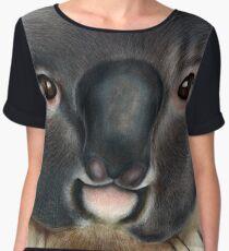 Animalia: Koala Chiffon Top