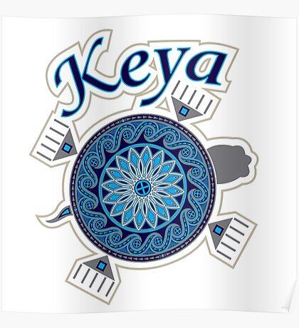 Turtle Keya Poster