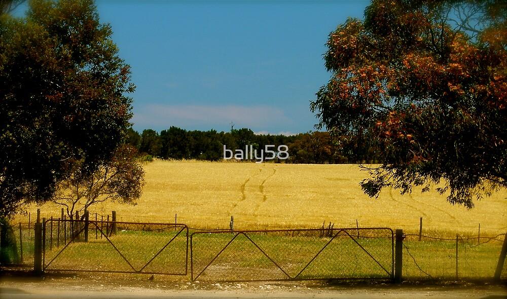 gates by bally58