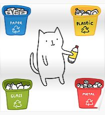 the cat recycles plastic Poster