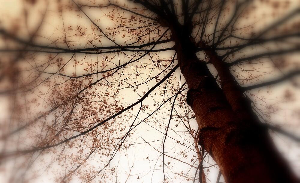 fly away by Ivana Ivanova Milcinoska