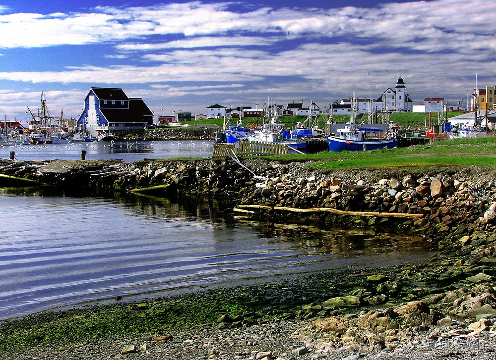 Bonavista Blue by Brian Carey