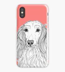 Long Haired Dachshund Portrait iPhone Case/Skin