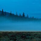 The Mist by Gary Lengyel