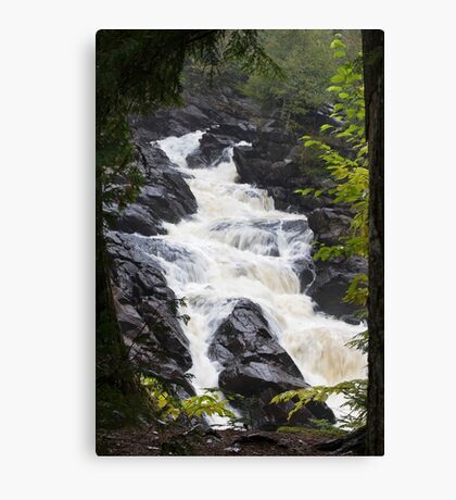 Ragged Fall - Oxtongue river Canvas Print