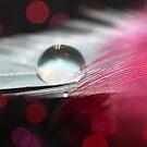 Drop 2 by Lindsey McKnight