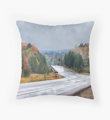 Algonquin park on Highway 60 in Autumn Throw Pillow