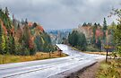 Algonquin park on Highway 60 in Autumn by Jim Cumming