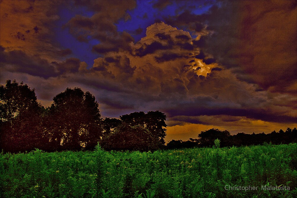 Staring At The Storm by Christopher  Malatesta