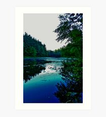 Holt Pond Art Print