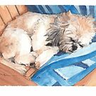 dog sleeping deckchair watercolor by Mike Theuer