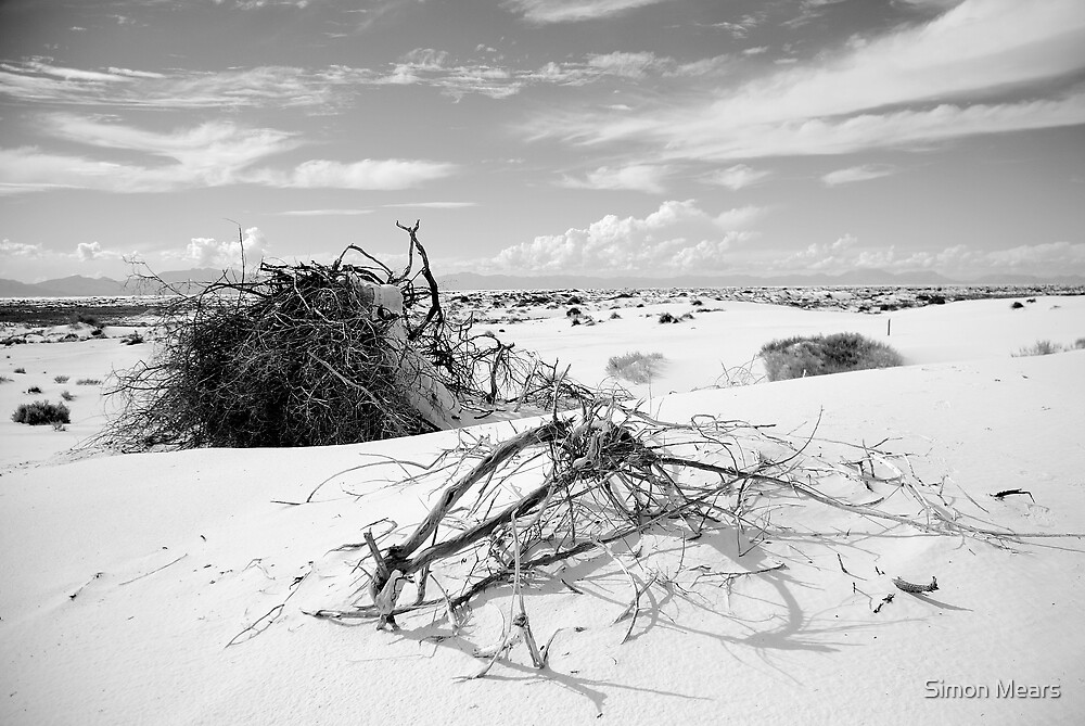 White Sands II by Simon Mears