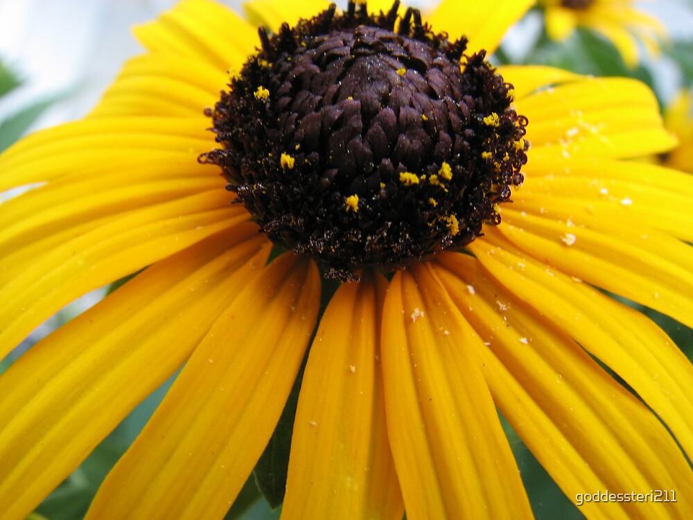 Pollen prints by goddessteri211