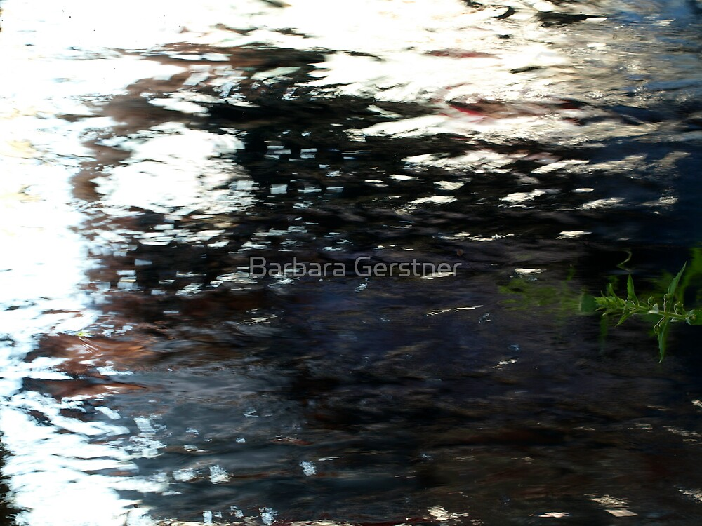 Souls Reflection by Barbara Gerstner