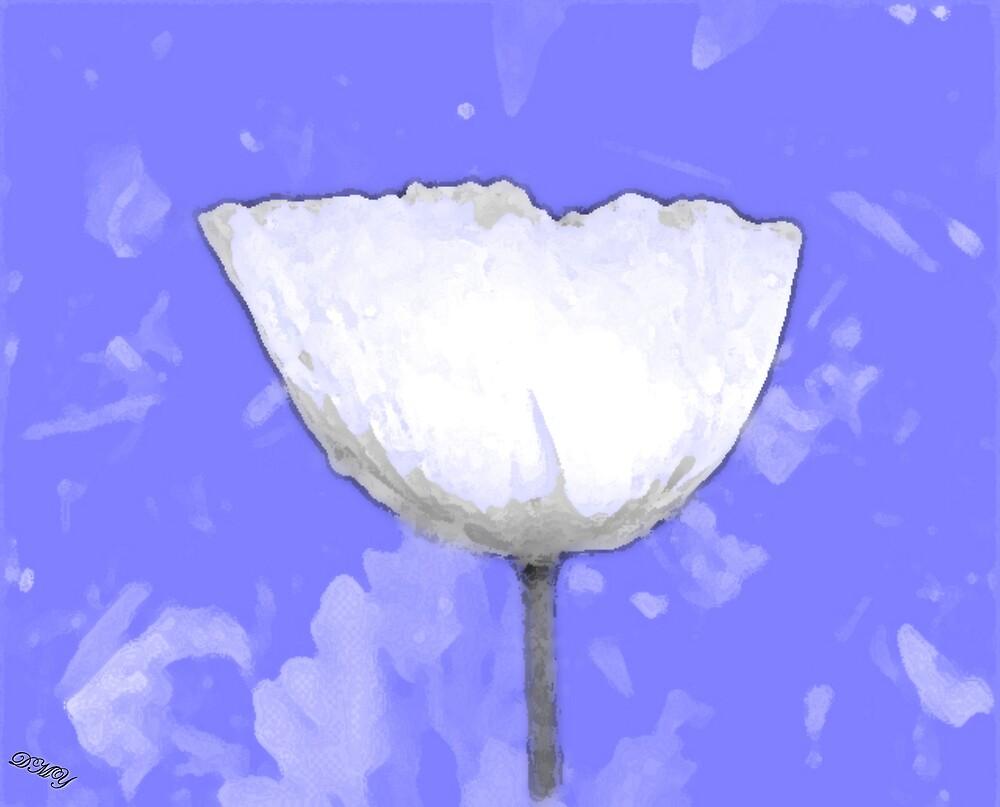 Soft White by shadyuk