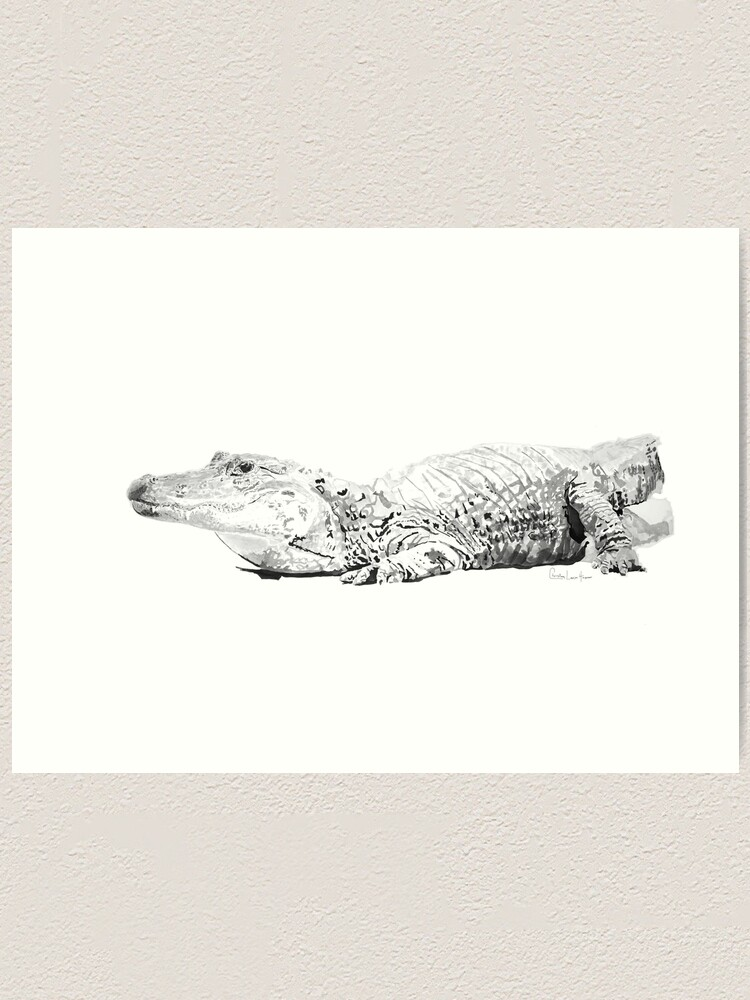 Alternate view of Alligator No.1 Art Print