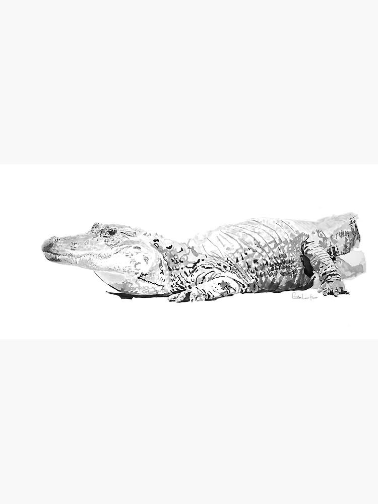 Alligator No.1 by christinahewson