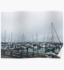 Sails by the Harbor Poster