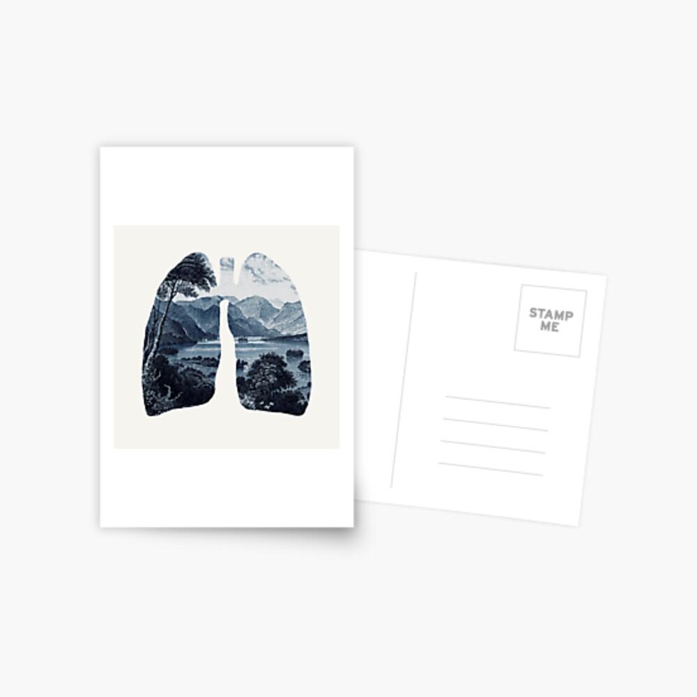 Frisch Postkarte