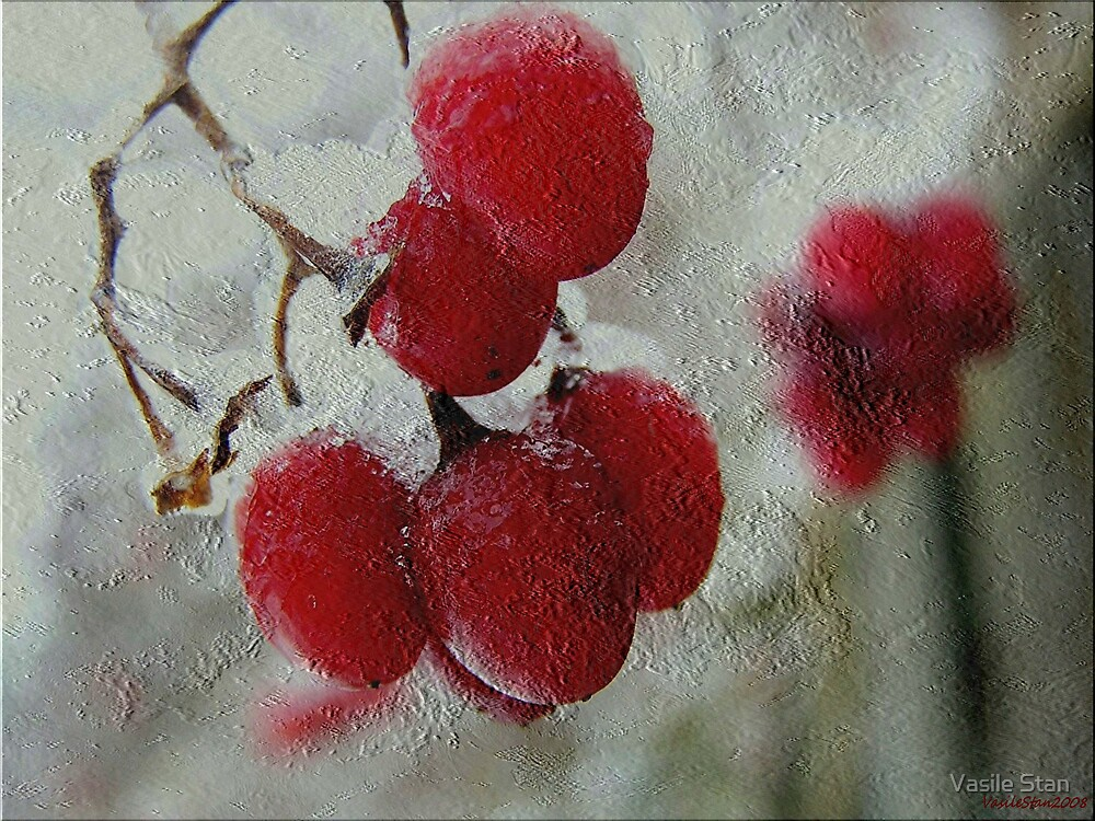 Red berries in winter by Vasile Stan