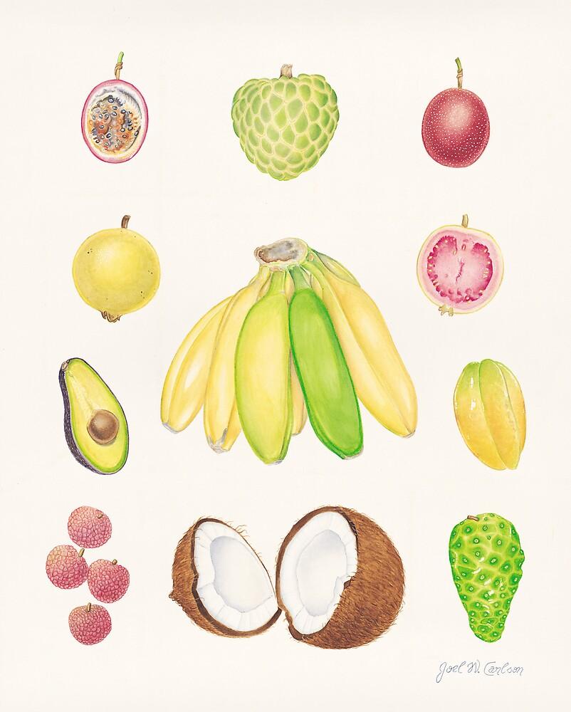 Tropical Fruit II by joeyartist