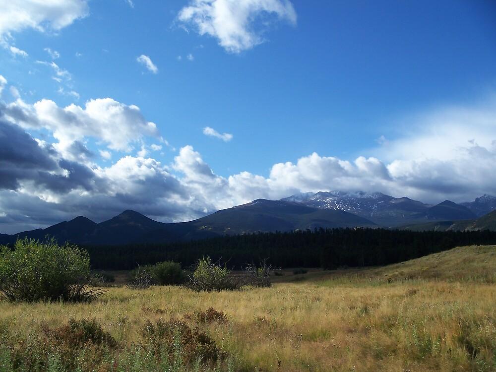 Peaks and Valleys by JLDunn