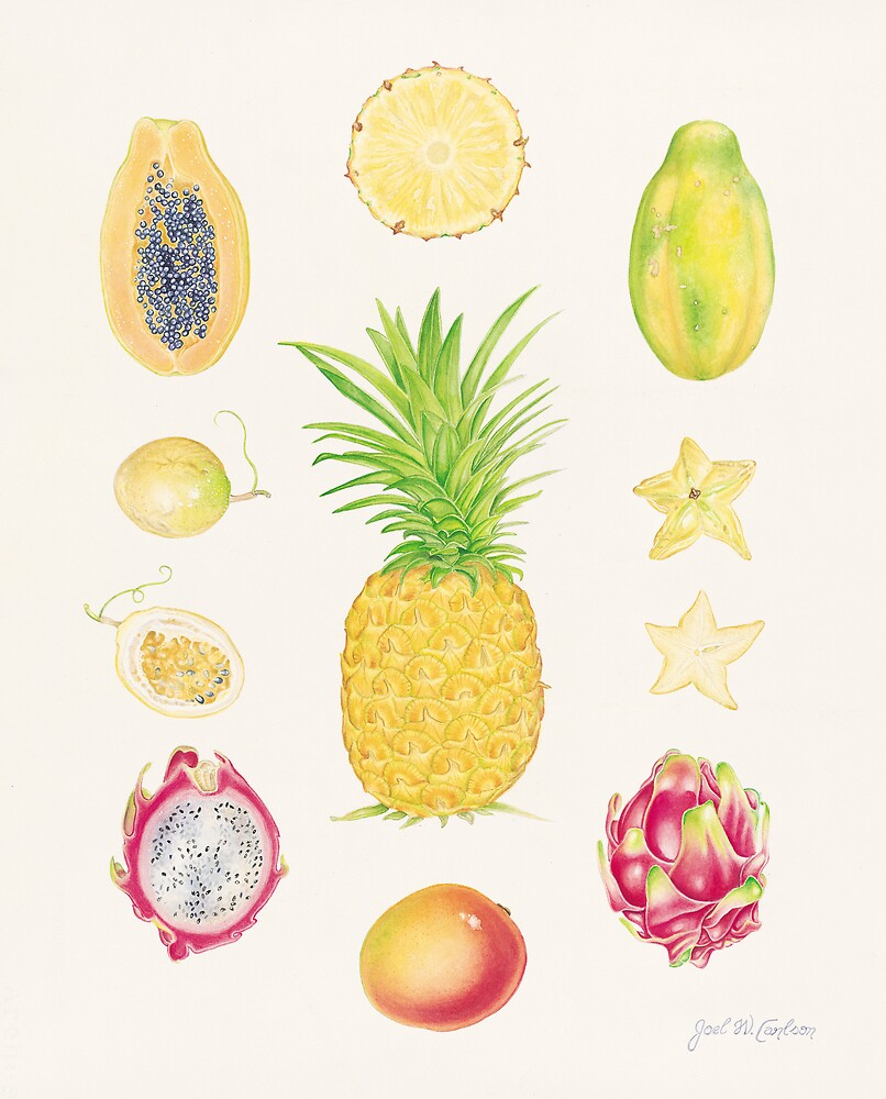 Tropical Fruit I by joeyartist