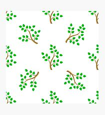 Green Cartoon Tree Leaves Seamless Background. Summer Plant Pattern Photographic Print