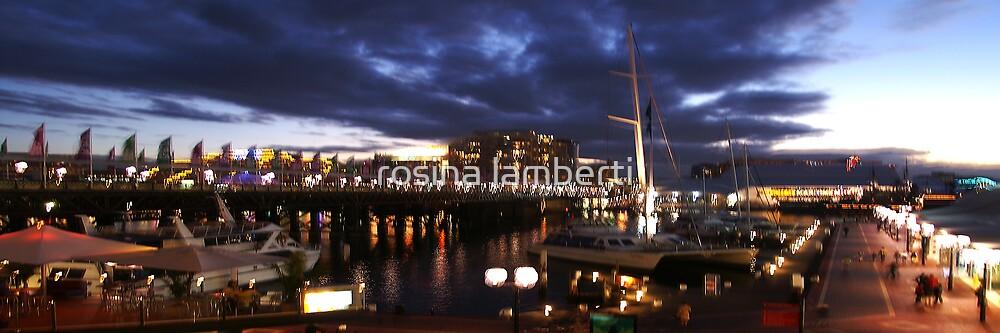 Darling Harbour  by Rosina  Lamberti