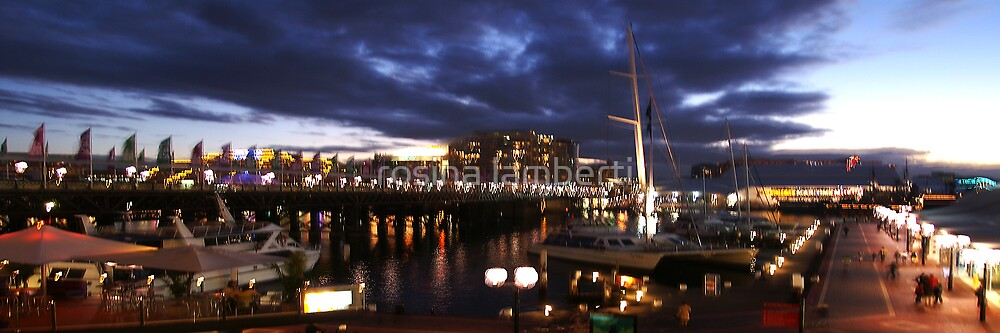 Darling Harbour  by rosina lamberti