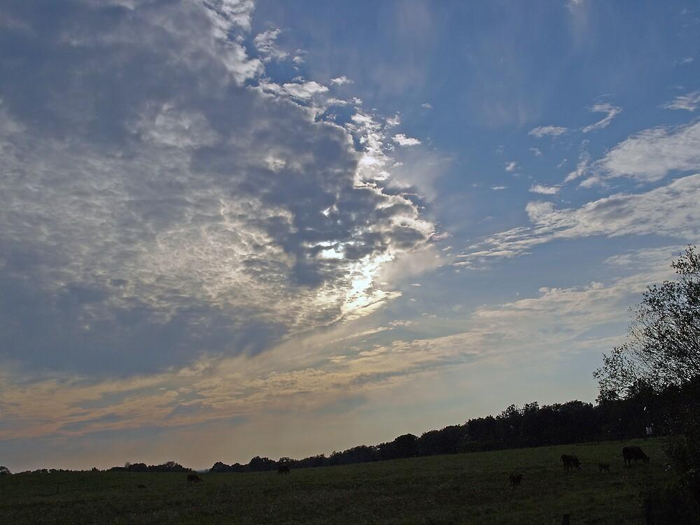 Evening Sky by Mark Dugan