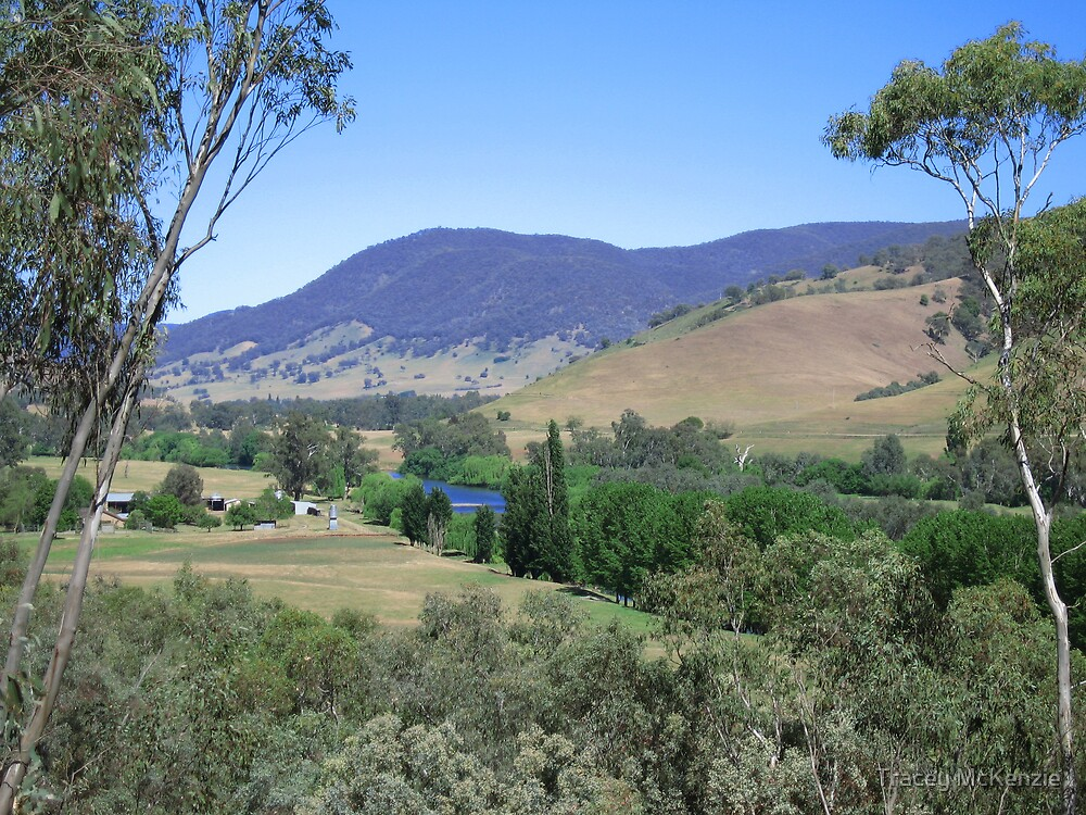 View of the Murray by Tracey McKenzie