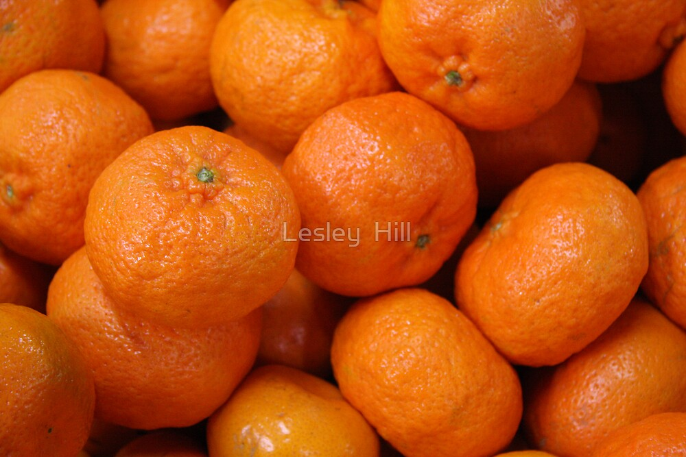 Mandarins by Lesley  Hill