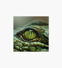 Eye of the Crocodile [iPad / Phone cases / Prints / Decor] Art Board